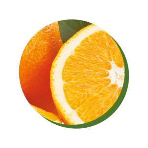 ChocoHealth® arancia melissa