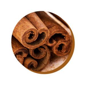 ChocoHealth® cannella