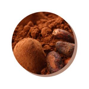 ChocoHealth® fave