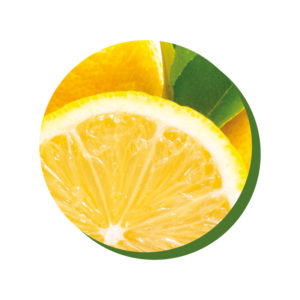 ChocoHealth® limone salvia